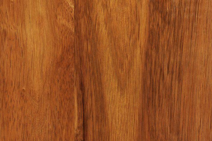 Hevea Holz