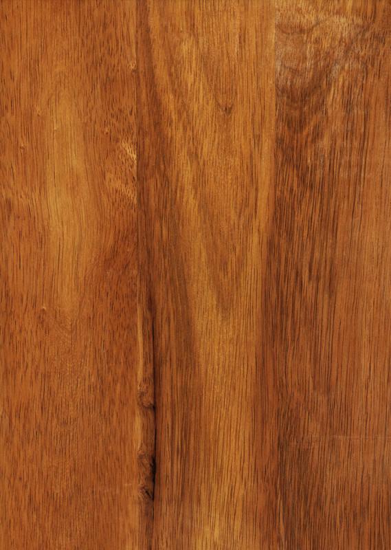 Hevea Holz Eigenschaften Verwendung Und Herkunft