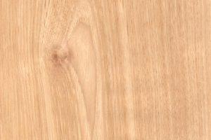 Hickory Holz