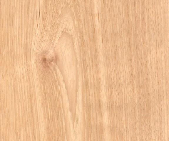 Hickory Holz Eigenschaften Verwendung Und Preise