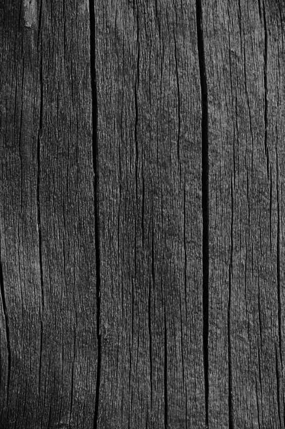 Holz Härten 4 Methoden Kurz Erklärt