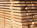 Holzboden: Welche Holzarten sind möglich?