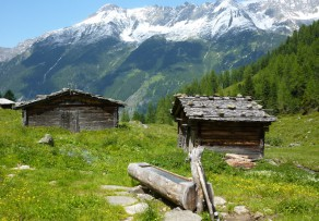 Holzbrunnen selber bauen