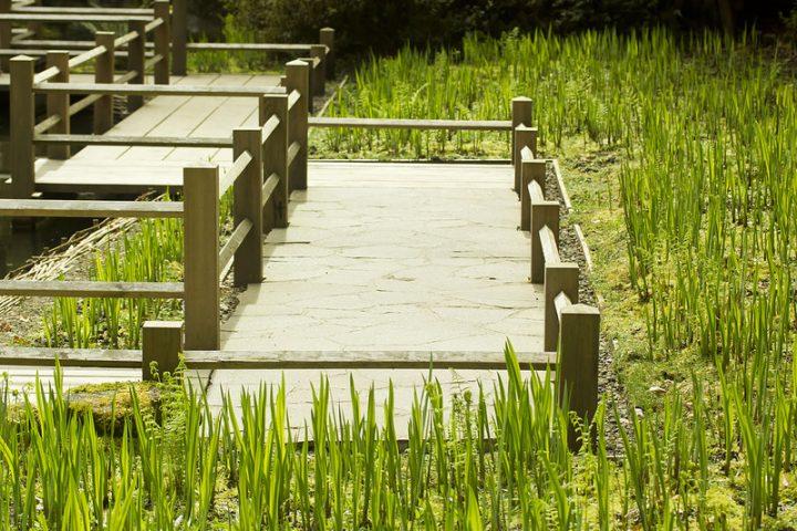 Holzdielen für Terrasse