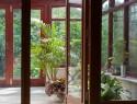 Holzfenster und ihre Ökobilanz – wie ökologisch sind Holzfenster wirklich?