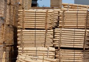 Holzpalisaden setzen