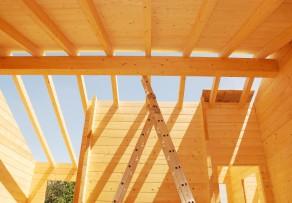 Holzständerbauweise oder gleich Holzhaus