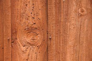 Holzwurm bekämpfen im Gartenhaus