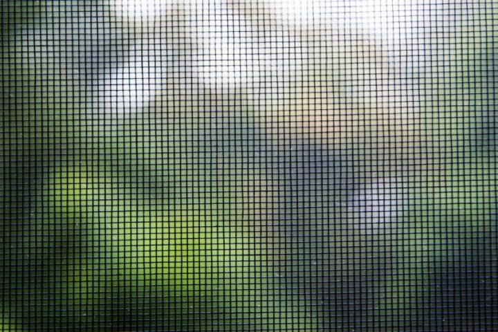 Insektenschutztür selber bauen