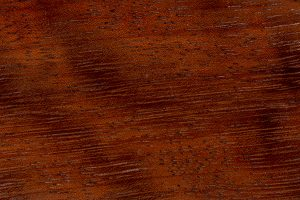 Iroko Holz