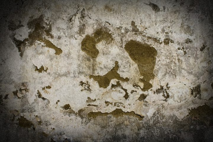 Kellersanieren selber machen