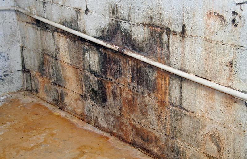 Kellersanierung Im Altbau Tipps Fur Die Professionelle Sanierung