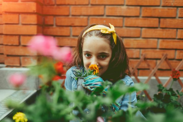 Klinkersteine im Garten