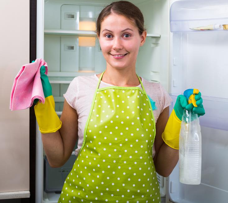 Kühlschrank » So vertreiben Sie schlechte Gerüche