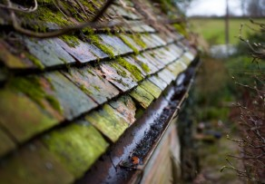 Kupfer moos dach