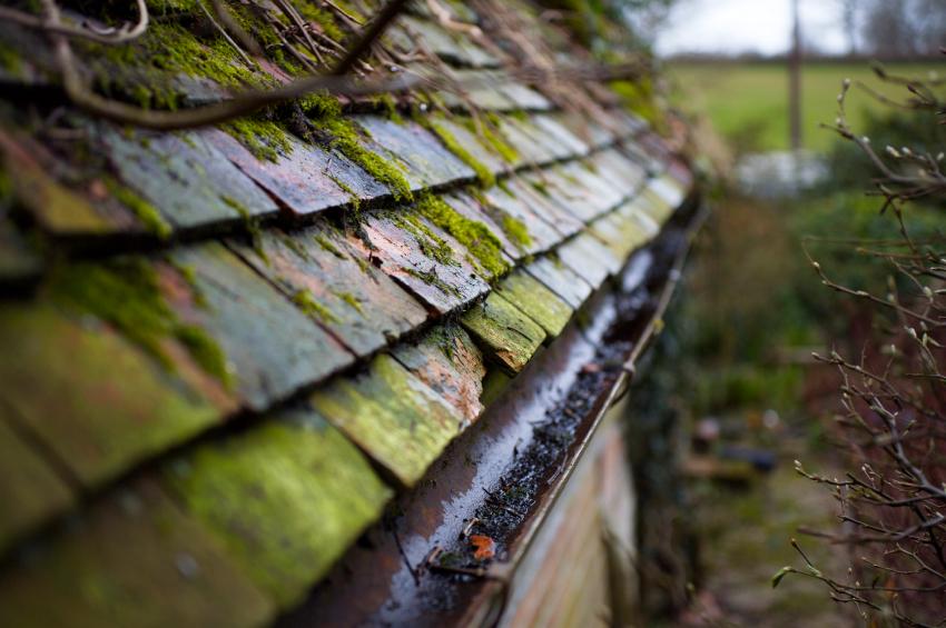 Fabelhaft Kupfer auf dem Dach » So schützen Sie es vor Moos @LQ_61