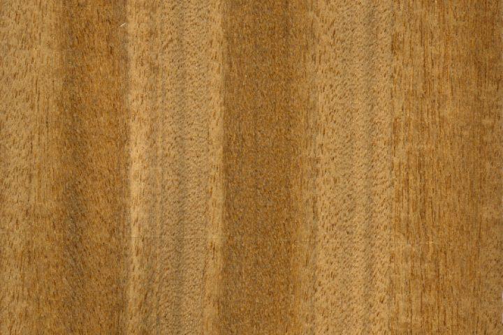 Limba Holz