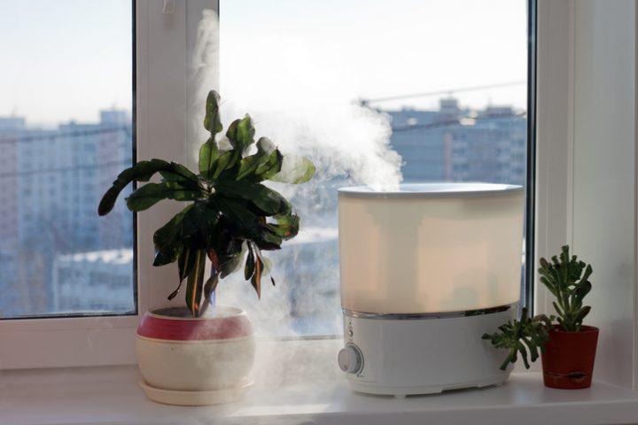 Luftbefeuchter Kalk
