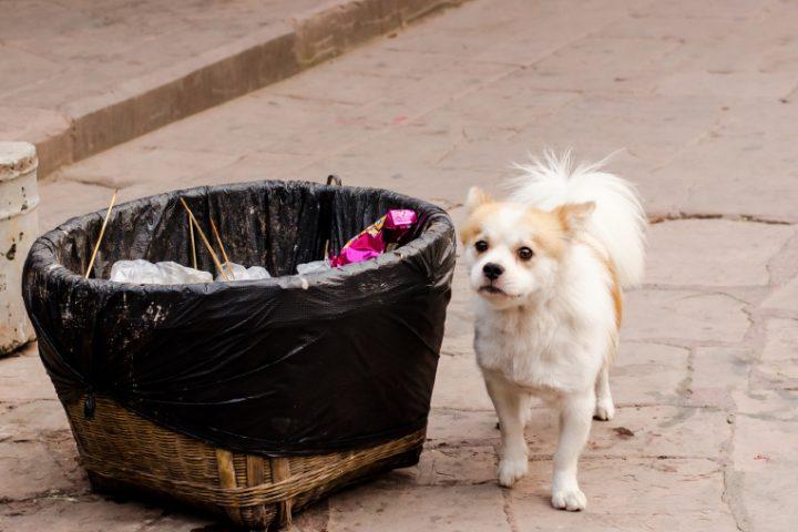 Mülleimer selber bauen