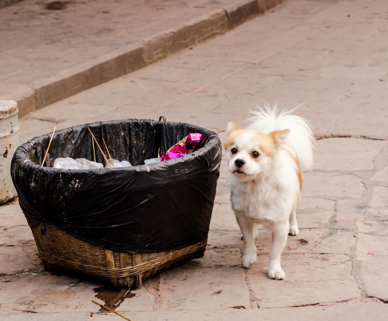 Mülleimer selber bauen » Tipps und Ideen