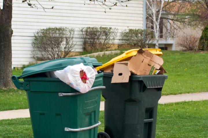 Mülltonne nicht geleert