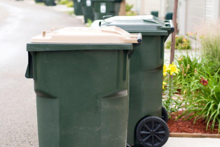 Mülltonne reinigen