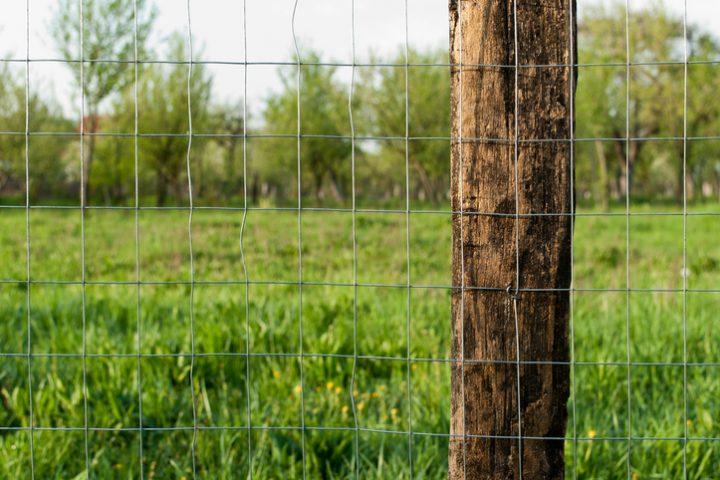 Maschendrahtzaun an Holzpfosten befestigen