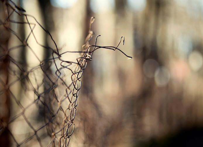 Maschendrahtzaun reparieren » So beheben Sie Schäden