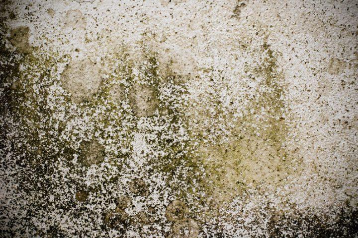 Sehr Mauer trocken legen » Schritt für Schritt erklärt NH34