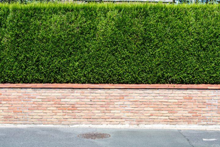Mauerabdeckung anbringen