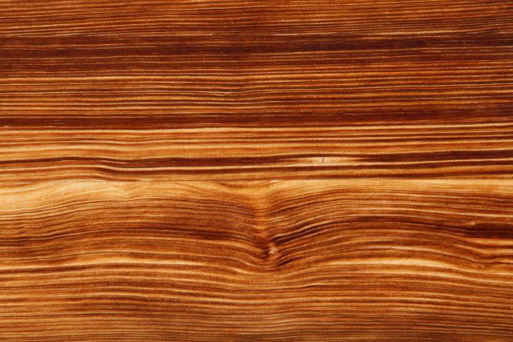 Nadelholz Holzarten