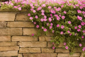 Natursteinmauer Garten