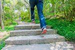 Natursteintreppe bauen