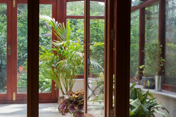 Neue Holzarten bei modernen Holzfenstern