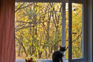 Normmaße für Fenster