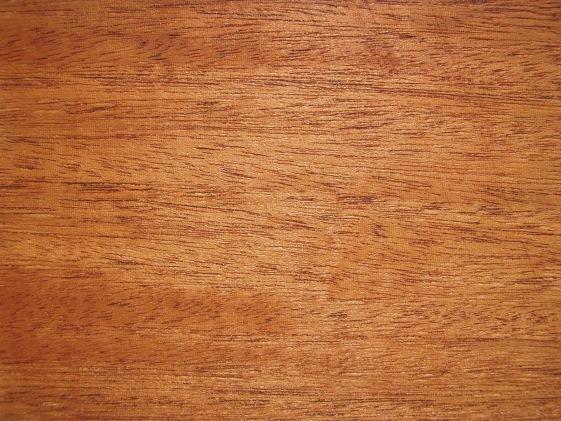 Okoumé Holz Eigenschaften Verwendung Und Preise