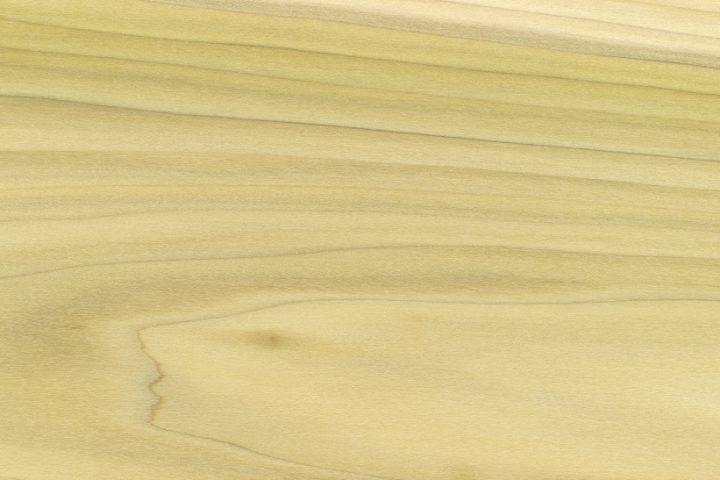 Pappelholz