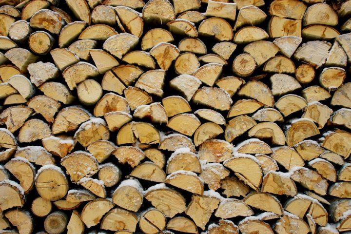 Pappelholz-als-Brennholz