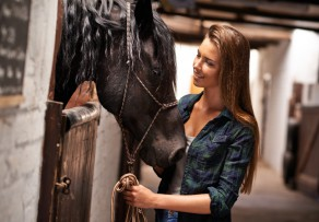 Pferdestall bauen Kosten