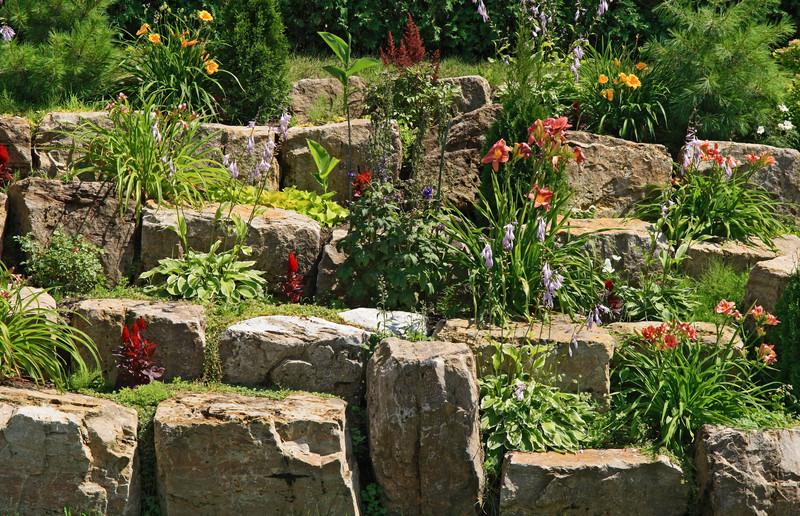 Pflanzen für die Trockenmauer
