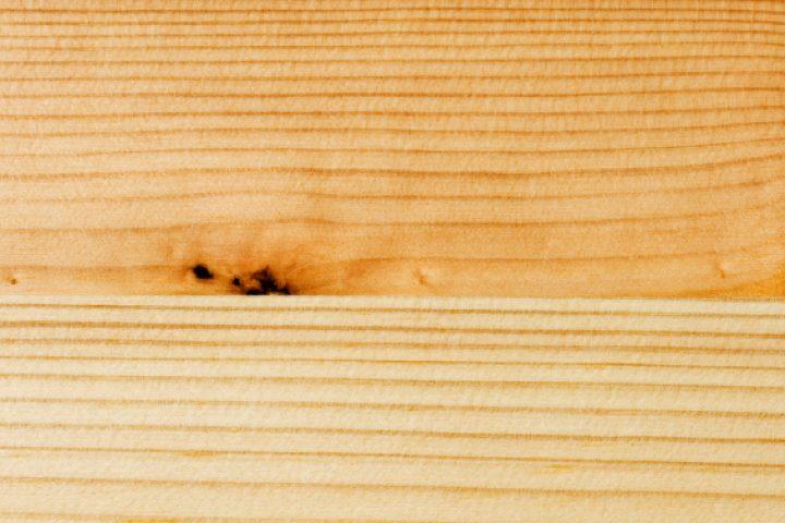 Pinienholz
