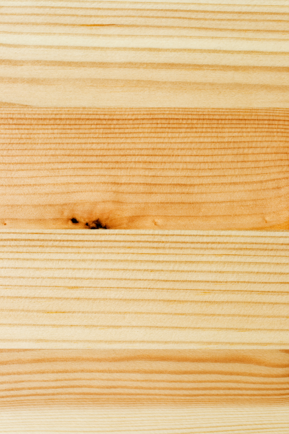 Pinienholz Eigenschaften Verwendung Und Herkunft