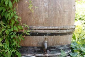 Regenwassersammler Fallrohr
