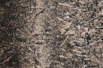 Sauerkrautplatten Asbest