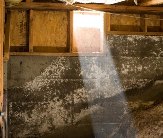 schimmel im mauerwerk putz gegen schimmel kleine ursache unangenehme mitbewohner risse in dem. Black Bedroom Furniture Sets. Home Design Ideas