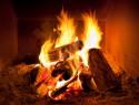 Schimmel verbrennen – ist das eine Lösung?