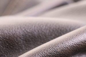 Schimmel von Leder entfernen