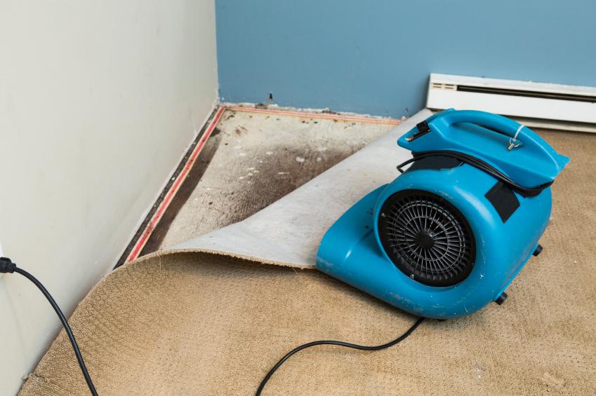 schimmel vorbeugen so verhindern sie schimmelbildung. Black Bedroom Furniture Sets. Home Design Ideas