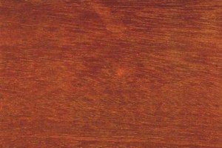 Extrem Sipo-Holz » Eigenschaften, Verwendung und Preise TK78