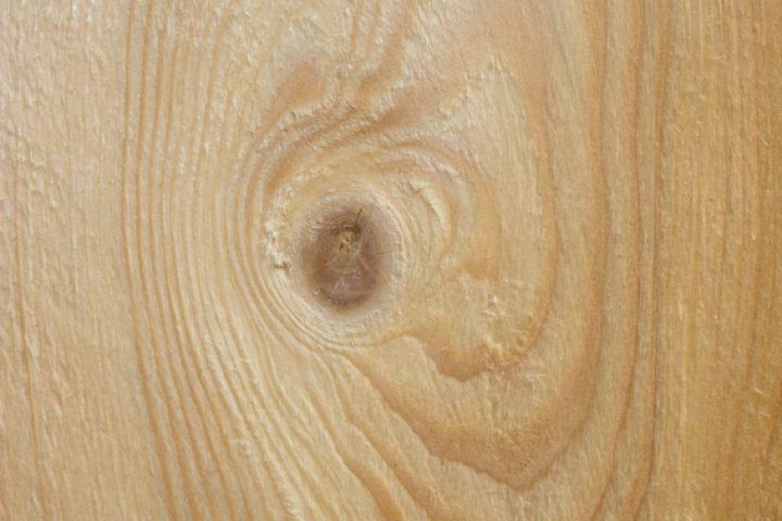 Spruce Holz